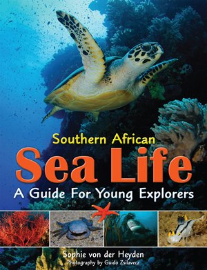 Southern African Sea Life: A Guide for Young Explorers