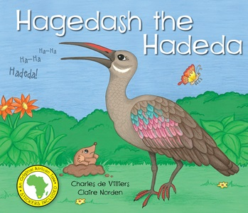 Hagedash the Hadeda