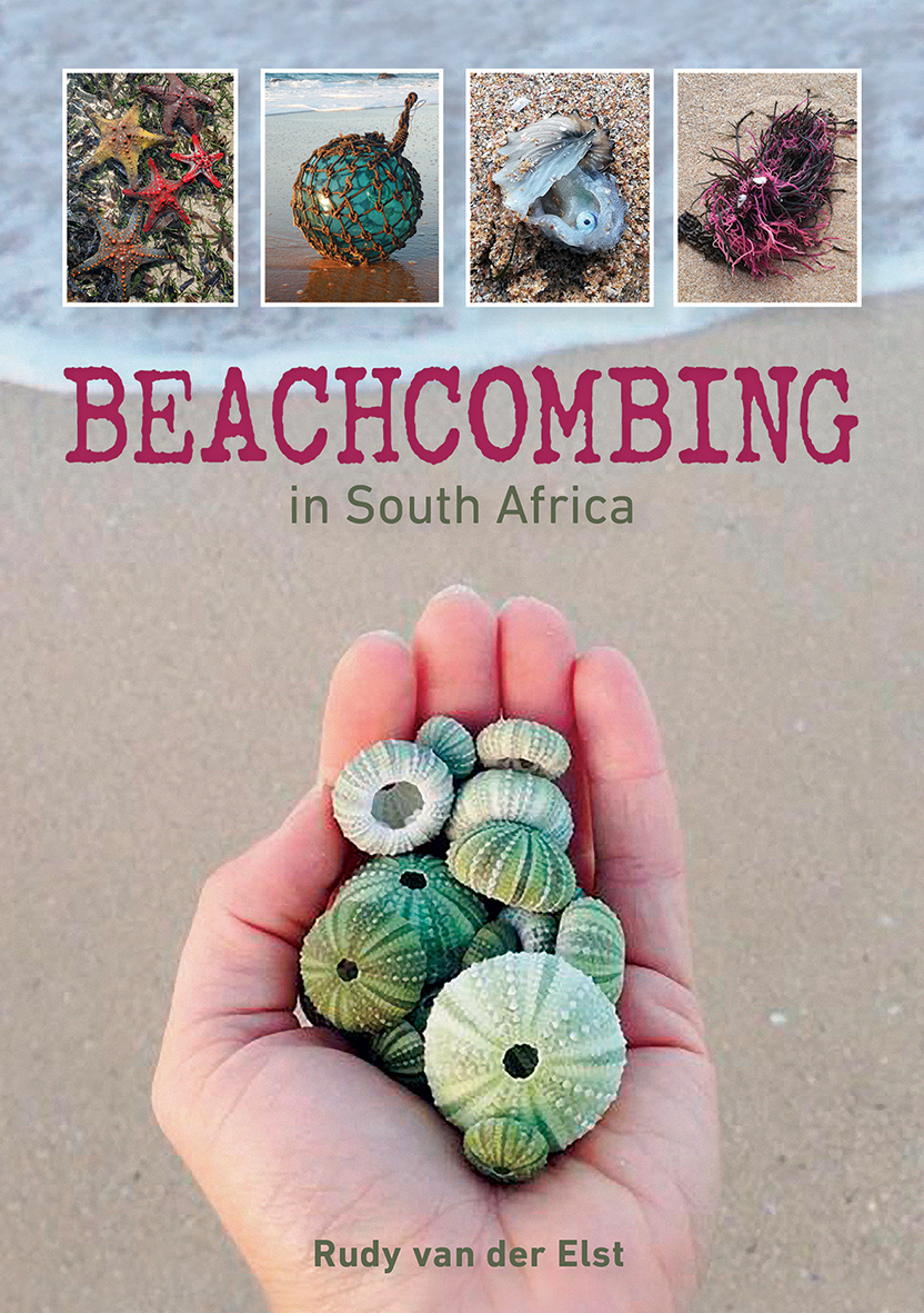 Beachcombing in South Africa
