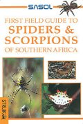 Sasol First Field Guide to Spiders & Scorpions of Southern Africa