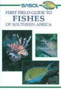 Sasol First Field Guide to Fishes of Southern Africa