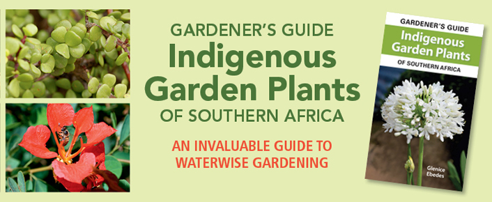 Gardener's Guide to Indigenous Garden Plants of Southern Africa