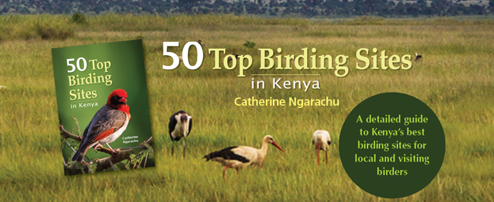50 Top Birding Sites in Kenya